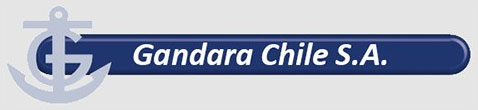 Company Logo of Gandara Chile SA