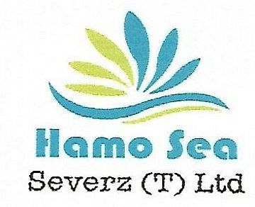 Company Logo of Hamo Sea Severz (T) Ltd